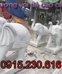 Mẫu voi đá